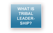 What Is Tribal Leadership?